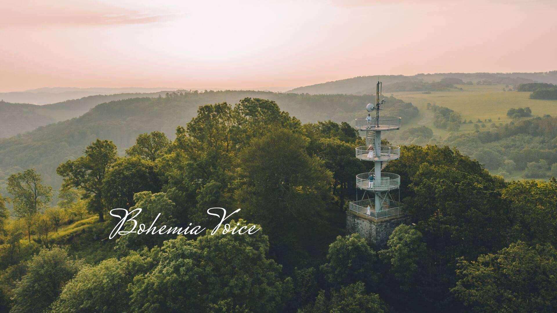 Média o Bohemia Voice